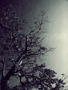 touching_the_sky____by_satyam9999-d799huq