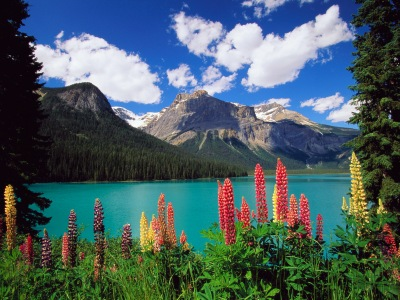 Emerald Lake and Canadian Rockies
