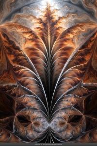 VM_fractal18- Xyrus, Fractal Flame