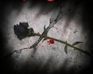 poze-dragoste_dragoste-ranita-300x238