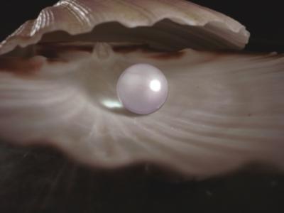perla-1_3e448471ee973e